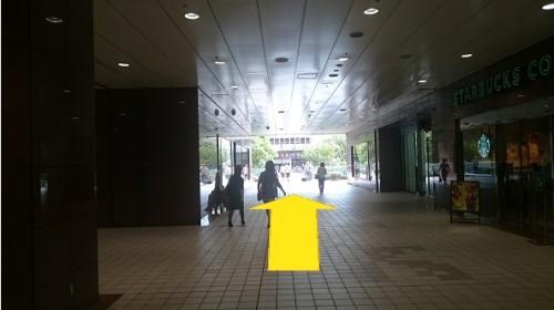 waychiba_02