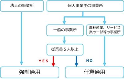 社会保険の適用の図